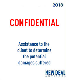Assistance to the client to determine the potential damages suffered 2018