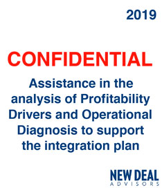 Assistance in the analysis of Profitability Drivers and Operational Diagnosis to support the integration plan