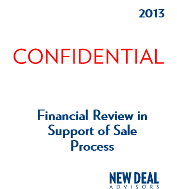 Financial Review in Support of Sale Process