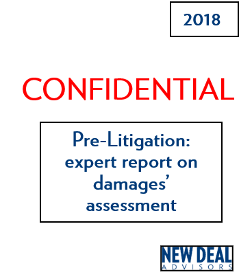 Pre-Litigation: expert report on damages' assessment
